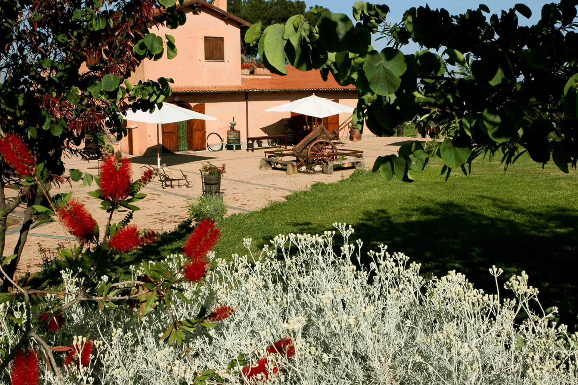 primavera-11-olivella>
